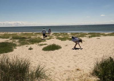 Sommer på Møn_klintholm_strand