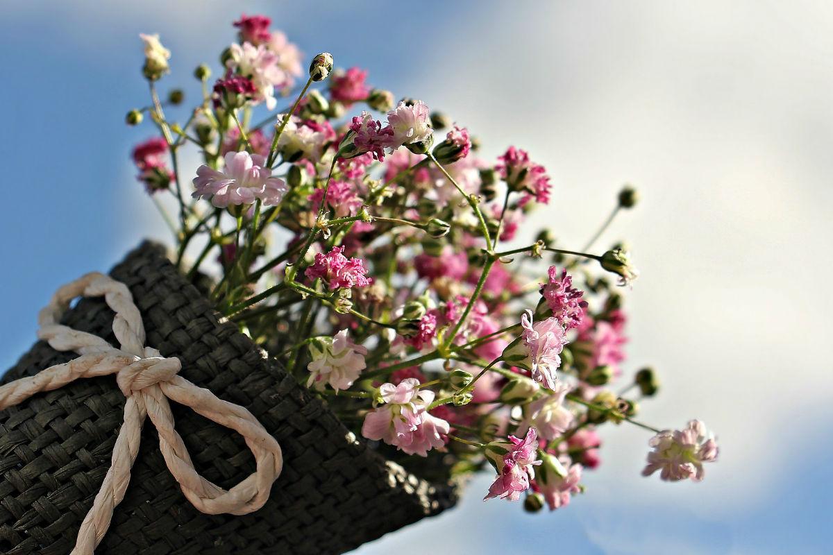 blomster-morsdag-rm-1200x800