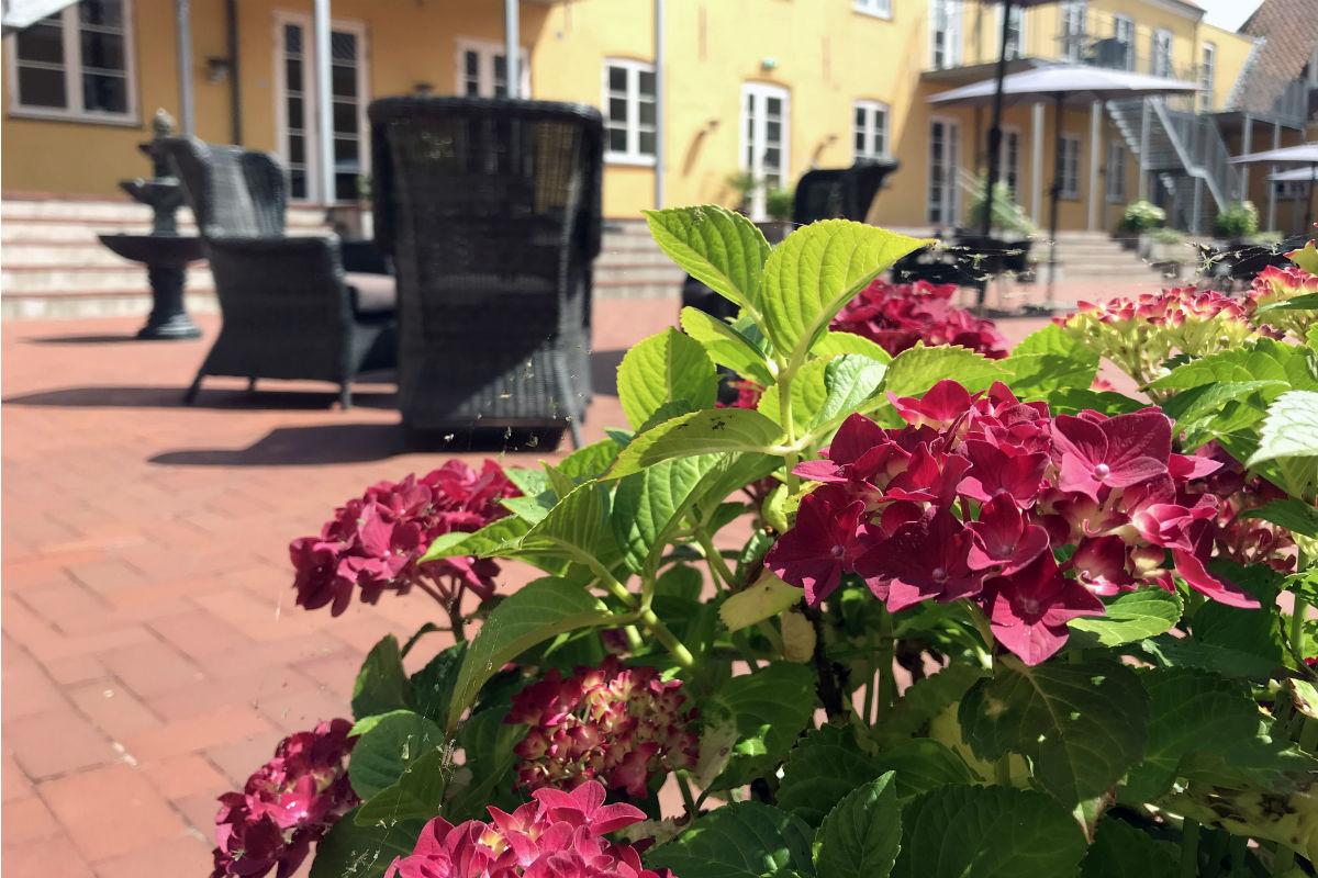 sommer-blomster-residensmoen-1200x800